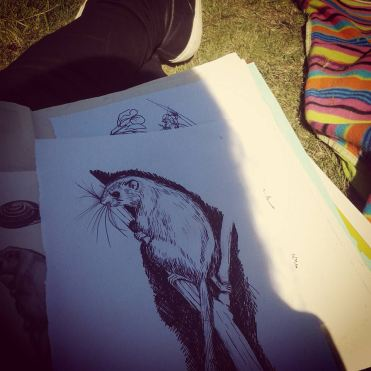 sketching
