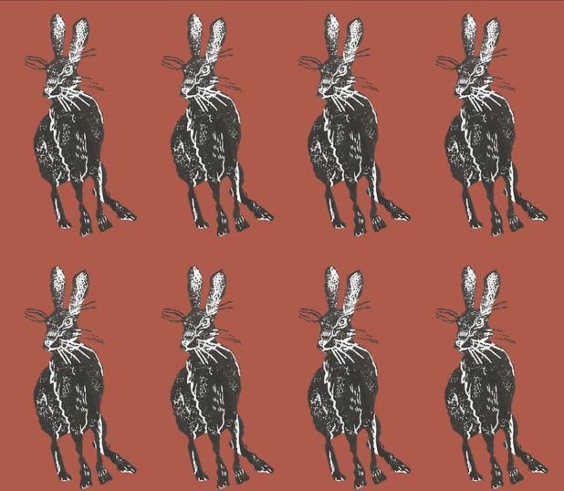 tamar hare pattern