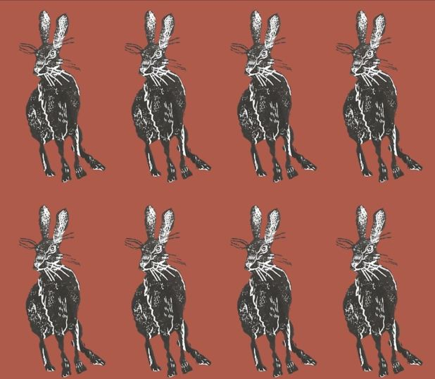 Tamar Valley Hare